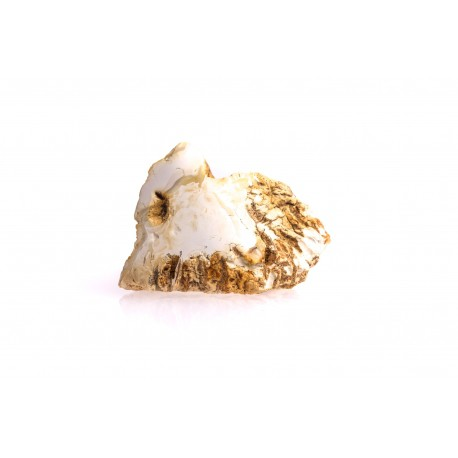 White amber nugget