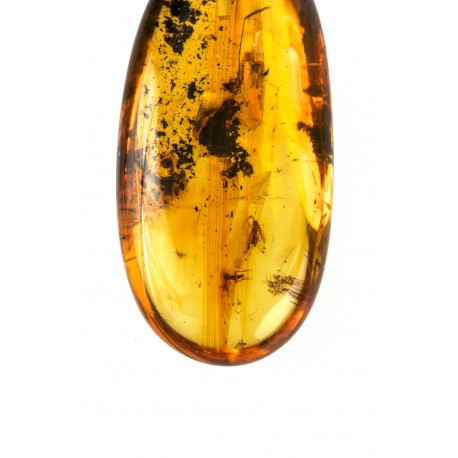 Clear Baltic amber with inclusions