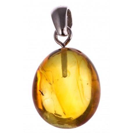 "Amber pendant with an inclusion ""Back to the Future"""