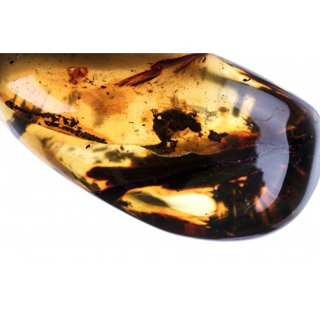 Clear amber nugget