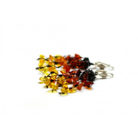 "Amber earrings ""Rainbow"""