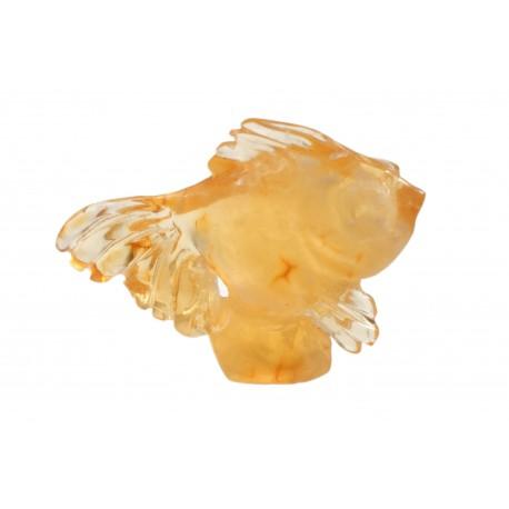Amber goldfish