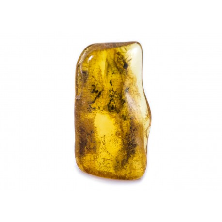 Amber with an inclusion