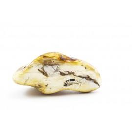 White amber nugget