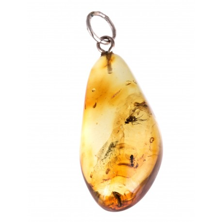 "Silver pendant with amber inclusion ""The Memory of Preila"""
