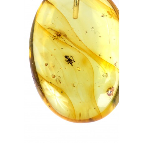 Amber inclusion with a silver loop