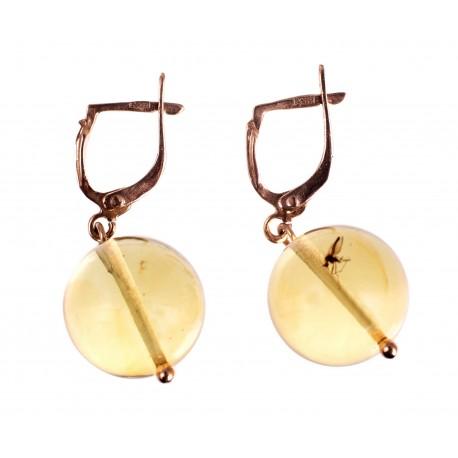 Auksiniai auskarai su gintaro inkliuzu