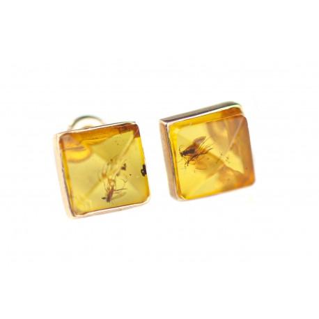 Aukso - gintaro auskarai su inkliuzais