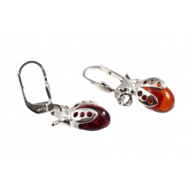 "Earrings ""Ladybirds"""